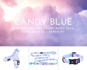 szelki typu guard Candy Blue